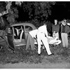 Car into tree -- 3100 block of Motor Avenue, 1951