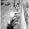 Boy Scouts paint fence on St. Augustine -- Westview Hospital building site, 1951