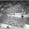 University of Southern California swimmers -- divers, 1949