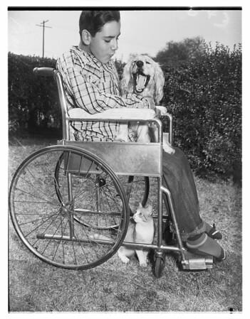 Boy gets dog, 1951