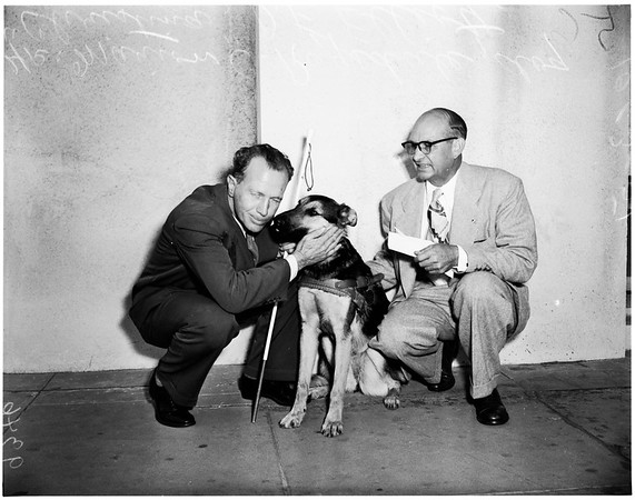 Gift Guide Dog to blind man, 1951.