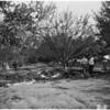 Plane crash... Reseda Street and Plummer Street, 1951