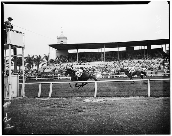 Del Mar Races, 1951