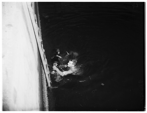Lifeguards Rescue Dog from under Commodore Heim bridge, 1951