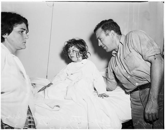 Monkey bites kid in face, 1951.
