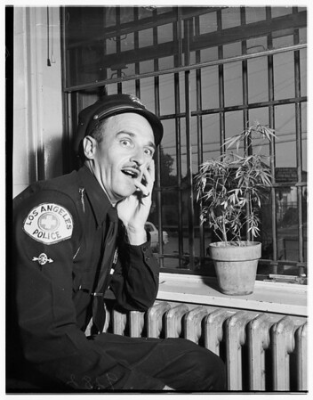 Marijuana in Van Nuys Jail, 1951