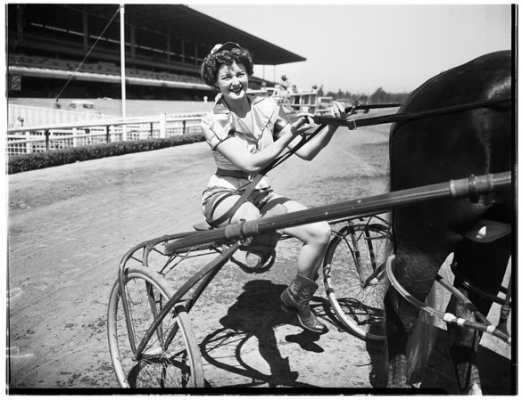 Harness Races at Hollywood Park, 1951