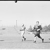 Football (Cleveland Browns versus Los Angeles Rams), 1951