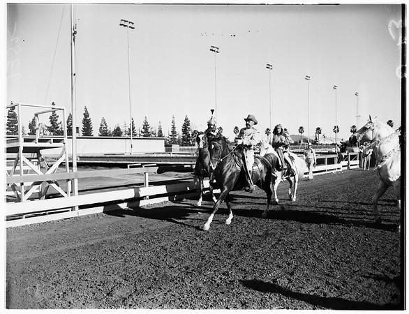All Arabian Horse Show, 1951