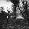 Brush fire (Rio Hondo fire), 1951