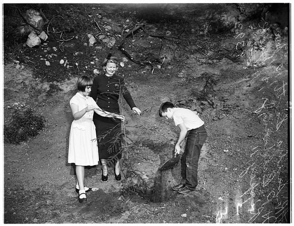 """""""Los Angeles Beautiful""""... Children's planting contest... planting seeds and bulbs on hillside, 1951"""