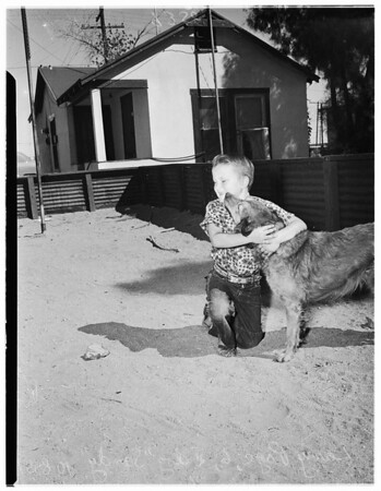 Dead boy  recovered, 1951