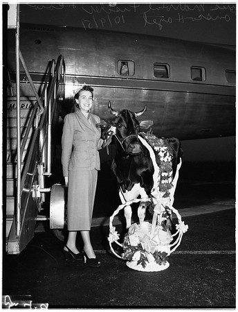 """Miss Wisconsin"" arrives for national October Cheese Week festival, 1951"
