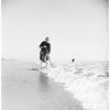 Clam Story (Pismo Beach), 1951.