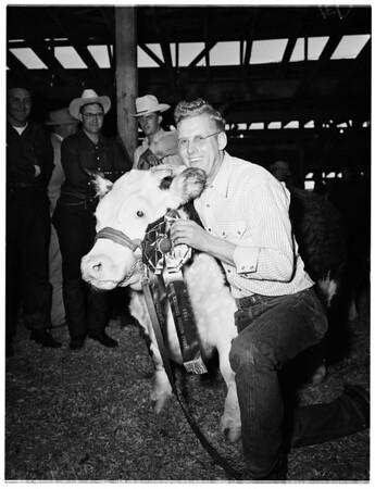 Great Western livestock show, 1951