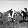 All Arabian Horse Show, 1951