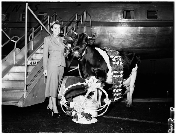 """""""Miss Wisconsin"""" arrives for national October Cheese Week festival, 1951"""