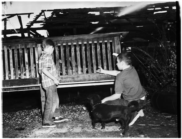 Stock Farm Fire, 1951