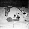 Orange show opens, 1952