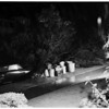 Tree down ...1117 Norton Avenue, 1952