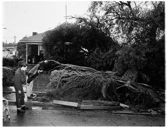 Rain in Van Nuys, 1952