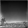 Atomic blast in Las Vegas, 1951