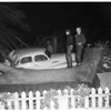 Tree uprooted in Santa Monica by 34-mile-per-hour wind..., 1952