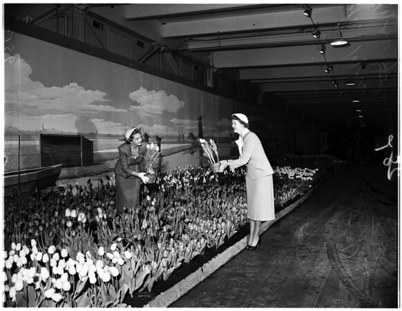 Flower show (International), 1952