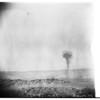 Atomic Bomb Picture, 1951