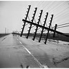 Telephone poles downed in Long Beach, 1952