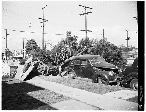 Wind damage (smashed window and downed neon sign), 1952