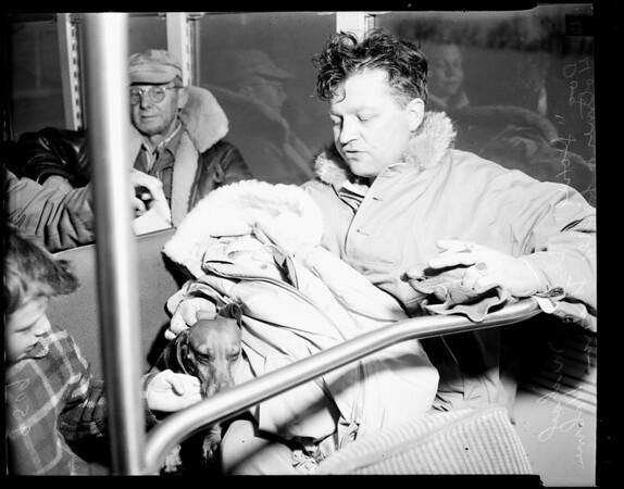 Bishop snowslide, 1952