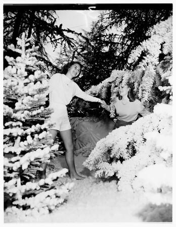 Flower Show ...Brookside Park, Pasadena, 1951