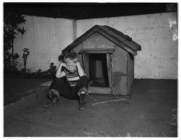 Dog Lost, 1951
