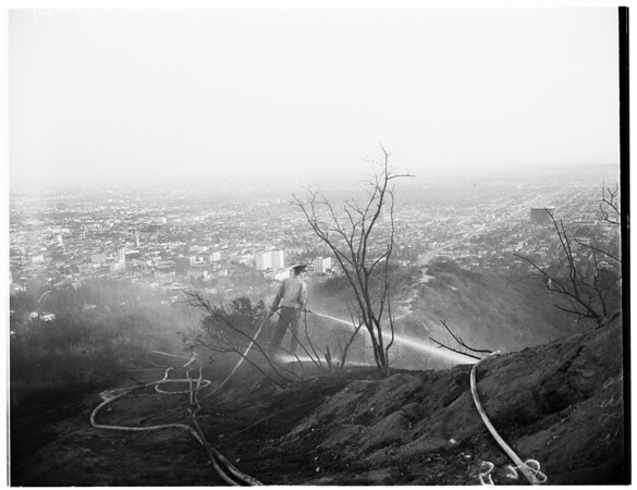 Hollywood Hills Fire, 1951