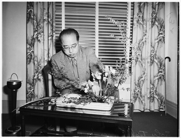 Japanese flower expert with exhibits, 1952
