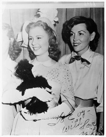Poodle death suit, 1952