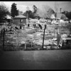 Amateur negatives (deer in back yard) Sun Valley, 1952