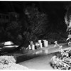 Tree down ...1117 Norton Avenue, 1952