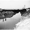 Drag Ballona Creek search for boys (Charnock Road, West Los Angeles), 1952
