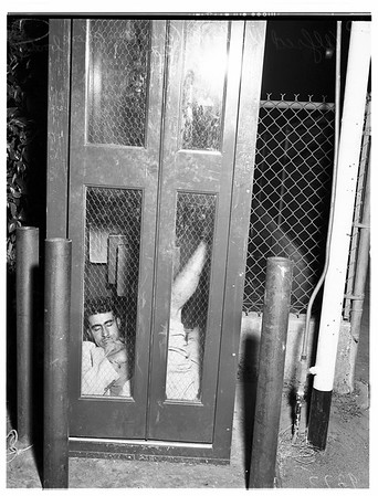 Drunk Trapped in Phone Booth, 1951
