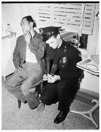 San Pedro stabbing, 1952