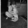 Dogs and Cat in Car (807 South Fedora Street), 1951