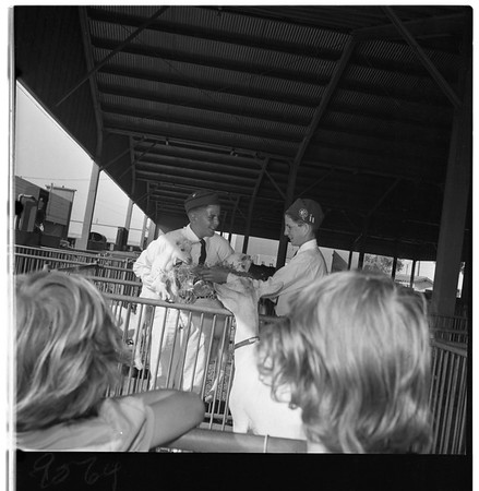 Four-H Club Fair in Pomona, 1952
