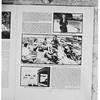 San Simeon Negatives (copies), 1952
