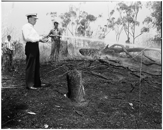 Brush fire (Hollywood Hills -- Creston Way and El Contento Avenue), 1952