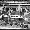 New Owl Drug Store in Norwalk, 1952