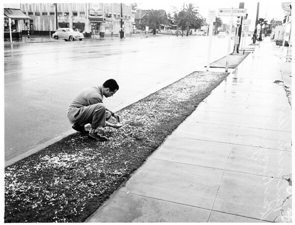 Hail storm near Arroyo Seco Parkway (?) and Avenue 43, 1952