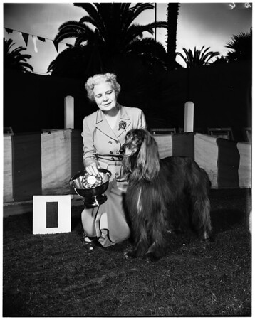 Beverly Rivera Dog Show at Miramar Hotel, Santa Monica Dog Show, Hound Group winner, 1952