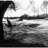 Pictures of storm, 1952